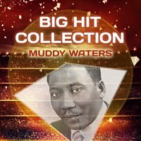Big Hit Collection — Muddy Waters