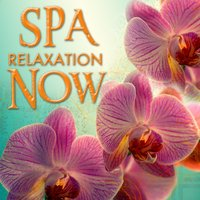 Spa Relaxation Now — New Age Music & Songs