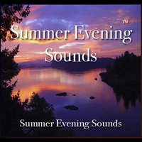 Summer Evening Sounds - 60 Minutes of Summer Evening Bliss — Nelson May