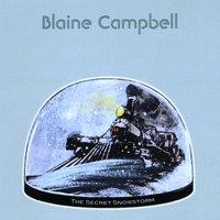 The Secret Snowstorm — Blaine Campbell