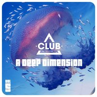 A Deep Dimension Vol. 5 — сборник