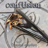 Wasted Emotion — Confusion