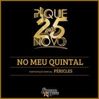 No Meu Quintal — Péricles, Pique Novo