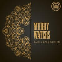 Take a Walk With Me — Muddy Waters
