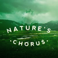 Nature's Chorus — Nature Sound Collection, Sonidos de la naturaleza Relajacion, Nature Sound Collection|Nature Sounds|Sonidos de la naturaleza Relajacion