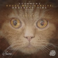 House Will Survive — Brothers' Vibe, youANDme
