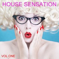 House  Sensation, Vol. 1 — сборник