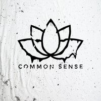 Common Sense — Faintheart
