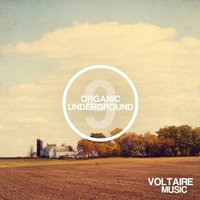 Organic Underground Issue 9 — сборник