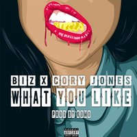 What You Like (feat. Cory Jones) — Biz