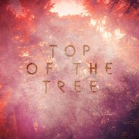 Top of the Tree — Linwood Bell