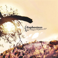 Strapped Confusions EP — Euphonious