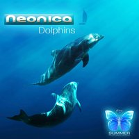 Dolphins — Neonica