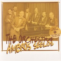 The Best Of Collection — Ambros Seelos Orchestra