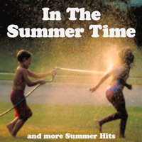 IN THE SUMMERTIME & MORE SUMMER HITS — сборник