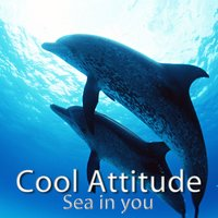 Cool Attitude - Sea in You — Coolness Trio