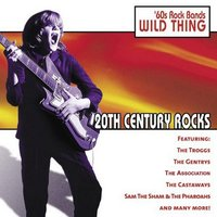20th Century Rocks: 60's Rock Bands - Wild Thing — The Troggs