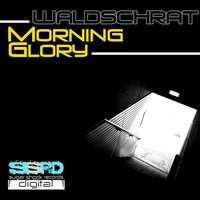 Morning Glory — Waldschrat