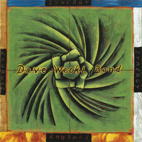Synergy — Dave Weckl Band