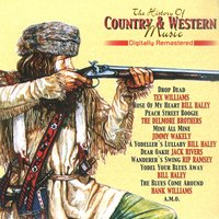 The History of Country & Western, Vol. 15 — сборник