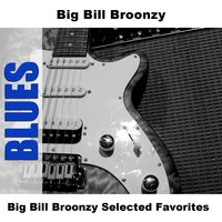 Big Bill Broonzy Selected Favorites — Big Bill Broonzy