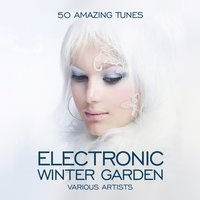 Electronic Winter Garden (50 Amazing Tunes) — сборник