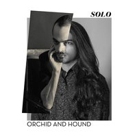 Solo — Orchid and Hound