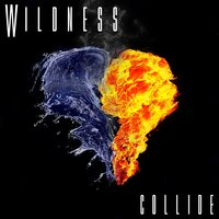 Collide — Wildness