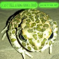 I Can't Tell a Frog from a Toad — сборник