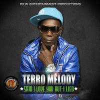 Said I Love You but I Lied — Terro Melody