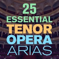 25 Essential Tenor Opera Arias, Songs & Duets with  from Mozart, Puccini, Bizet, Verdi, Donizetti & More — сборник