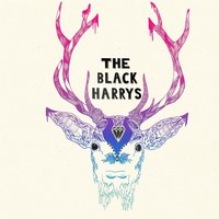 The Black Harrys — The Black Harrys
