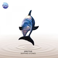 Skipping Stones — Spective