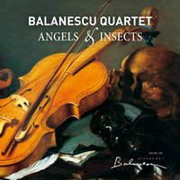 Angels & Insects — Balanescu Quartet