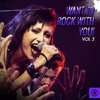 Want to Rock with You!, Vol. 3 — сборник