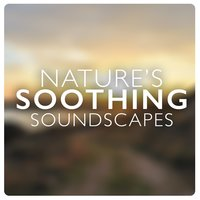 Nature's Soothing Soundscapes — Nature Sounds Therapy, Soundscapes!, Soothing Sounds, Soundscapes!|Nature Sounds Therapy|Soothing Sounds