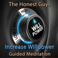 Increase Willpower — The Honest Guys