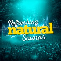 Refreshing Natural Sounds — Natural Forest Sounds, Nature Sounds Sleep, Nature's Mystic Moods, Nature's Mystic Moods|Natural Forest Sounds|Nature Sounds Sleep