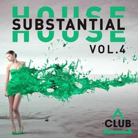 Substantial House, Vol. 4 — сборник