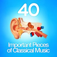 40 Important Pieces of Classical Music — сборник