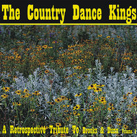 A Retrospective Tribute to Brooks & Dunn, Vol. 1 — The Country Dance Kings