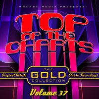 Immense Media Presents - Top of the Charts, Vol. 37 — сборник