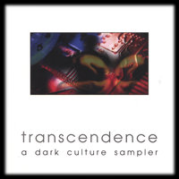 Various Artists — Transcendence