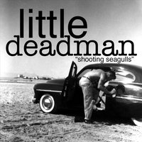 Shooting Seagulls — Little Deadman