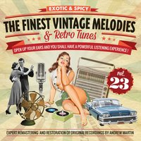 The Finest Vintage Melodies & Retro Tunes Vol. 23 — сборник
