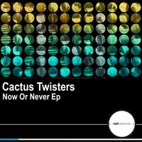 Now Or Never — Cactus Twisters