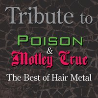 Tribute to Poison and Motley Crue: The Best of Hair Metal — Deja Vu