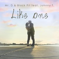 Like One (feat. Johnny T.) — Mr. D & Black Pit