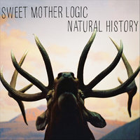 Natural History — Sweet Mother Logic