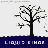 Backwater Slides - Acoustic Indifference — Liquid Kings